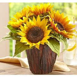 Silk Faux Sunflower in Bark Vase