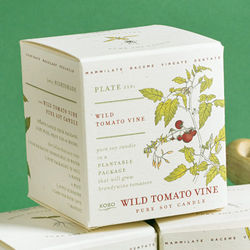 Wild Tomato Vine Candle with Tomato Seeds