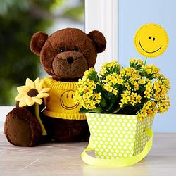 Get Well Bear Stuffed Animal and Yellow Flowers