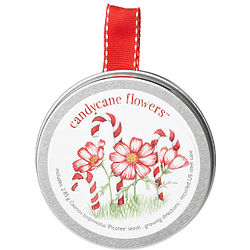 Candy Cane Flowers in Gift Tin