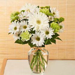 Small Serene Green Bouquet