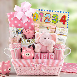 Pink Bundle of Joy Baby Gift Basket