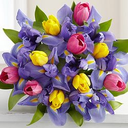 Fanciful Tulip and Iris Bouquet
