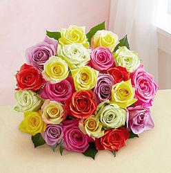 Two Dozen Beautiful Bounty Assorted Roses