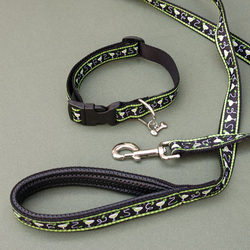 Margarita Medium Dog Collar and Leash