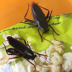 4 Roach Bag Clips