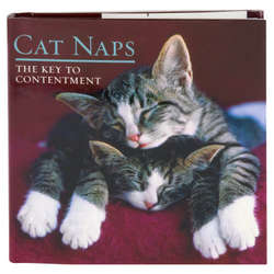 Cat Naps: The Key To Contentment Book