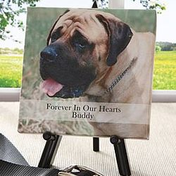 Forever In Our Hearts Pet Photo Canvas Art