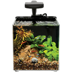 Evolve2 Nano Desktop Aquarium