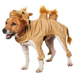 Halloween Camel Dog Costume