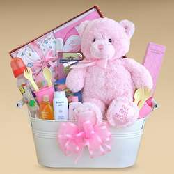 Welcome Home Little Girl Gift Basket