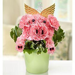 Piggy Flower Pail