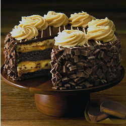 Reese's Peanut Butter Chocolate Cake Cheesecake
