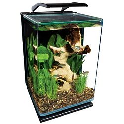 Portrait Glass 5 Gallon LED Aquarium Kit