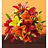 Red, Yellow and Orange Lily Bouquet