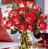 18 Red Velvet Roses Bouquet