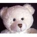 Teddy Bears for Gamblers
