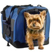Gifts for Pets on the Go